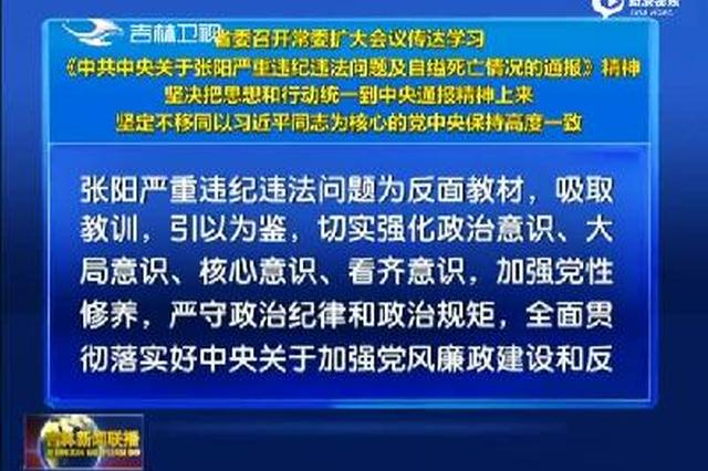 吉林省委常委扩大会议:张阳玷污军队形象
