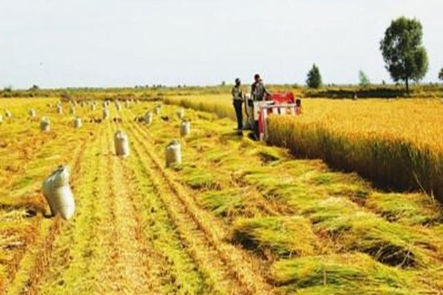 吉林省去年三农工作综述 活力动力增强质量效益齐升