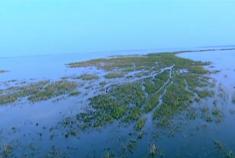 云游中国最大淡水湖泊——鄱阳湖
