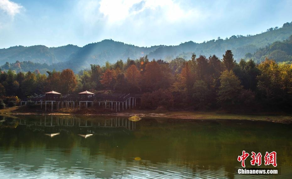 西新余市渝水区百丈峰在冬日阳光照耀下层林尽染,美不胜收.长度