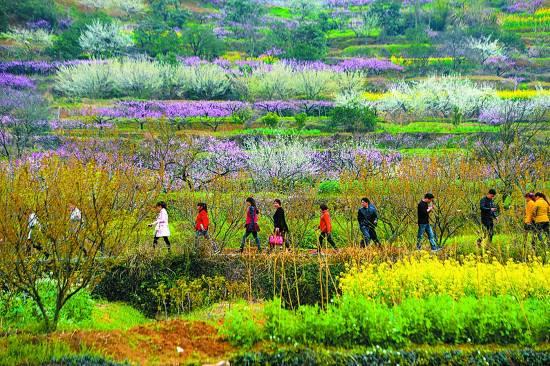 江西發布2018省5A、4A級鄉村旅游點擬定名單