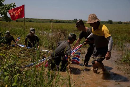 抗洪间隙,某合成旅官兵帮助江西省鄱阳县饶埠镇湾埠树下村百姓抢收水稻。