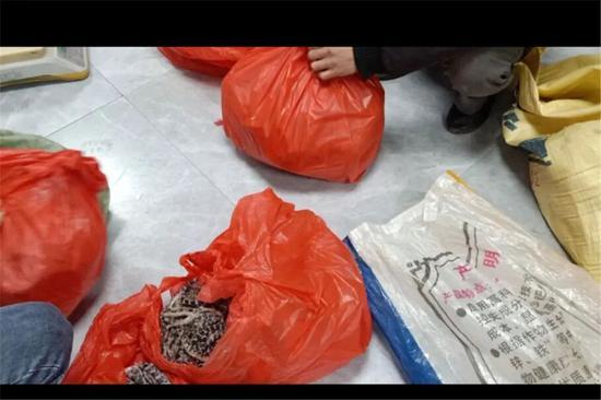 ▲警方缉获的半制品蛇