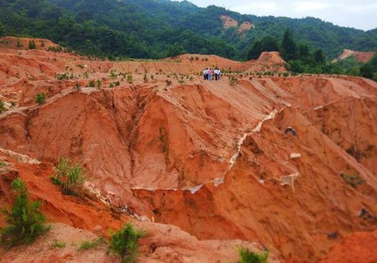 中央督察组:赣州稀土矿山修复缓慢 综合治理规划造假