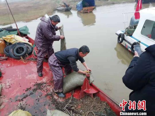 2月26日,江西省渔政部门组织渔民将螺蛳放回鄱阳湖水域。 曹辉摄