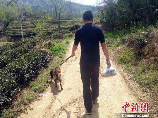 民警携警犬沿路寻找 苏映旭 摄