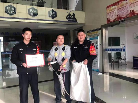 """""""野鸡""""原是白鹇!九江警民联手救助国家二级保护动物"""