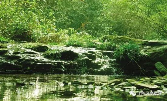 电影里面的那些奇幻的森林秘境 江西都有!