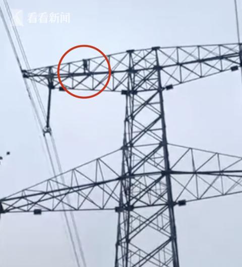 9岁男童赌气爬上70米高压电塔 致高压电网瘫痪