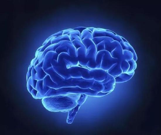 谁还不是个宝宝?科学家证实大脑要到30岁才成熟