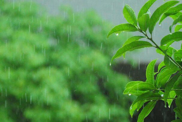 未来5天雨水是常客 江西今起迎两次较明显降雨