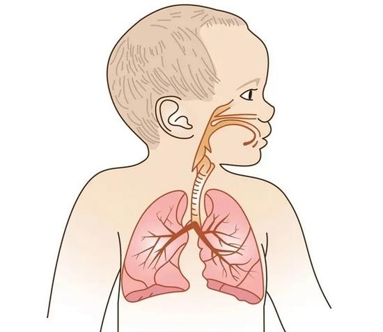 九江妇幼保健院开展肺脏超声新技术 让早产儿、新生儿远离辐射伤害