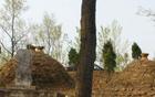 男子将邻居祖坟夷为平地 被拘后再次毁坟被判赔钱