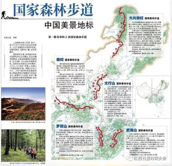 全国人大代表朱虹:加快推进国家森林步道体系建设
