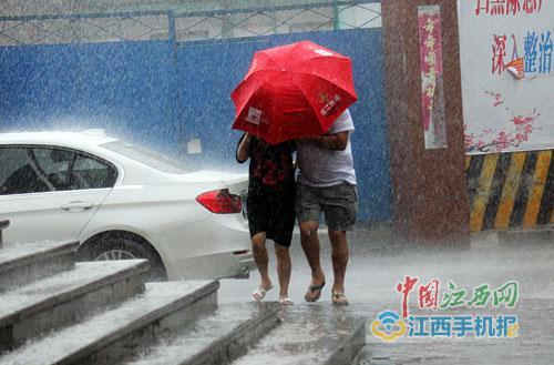 """受""""玛莉亚""""影响,南昌昨日下午出现短时风雨。 图/江南都市报全媒体记者杨高辉"""