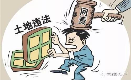 赣州信丰县国土局一干部非法买卖集体土地被处分