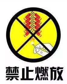 以下区域禁止燃放烟花爆竹: