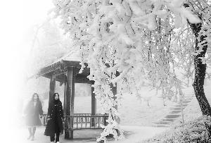 """寒潮离去 难得一日好天气 南昌明晚雨水""""卷土重来"""""""