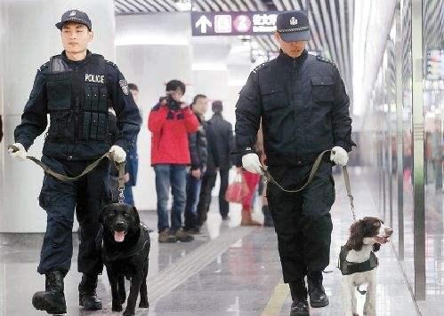 南昌市公安局招聘110名地铁辅警 5月28日报名截止