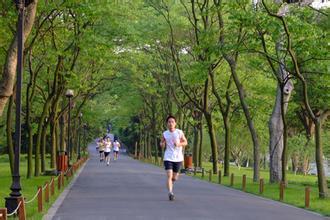 晨跑可加速代谢 空腹晨跑是否更减肥?