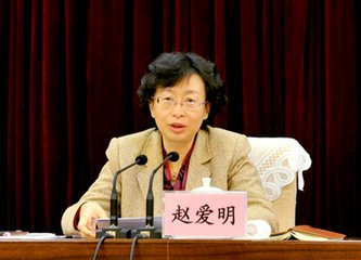 赵爱明出席会议 推进乡镇干部绩效考核试点工作