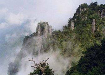 """江西靖安开启""""绿水青山就是金山银山""""加速度"""