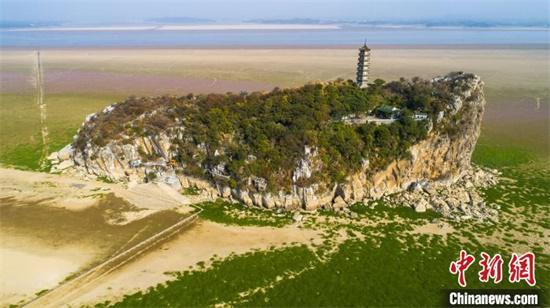 10月29日,正值鄱阳湖枯水期,丰水期烟波浩渺的湖面,已经变成一片草原花海,湖中心的鞋山岛裸露出水面,成为一道独特的风景。 李学华 摄