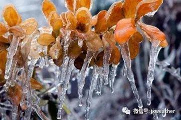 明后两天赣北阴天部分有小雨
