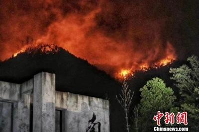 景德镇森林火灾+