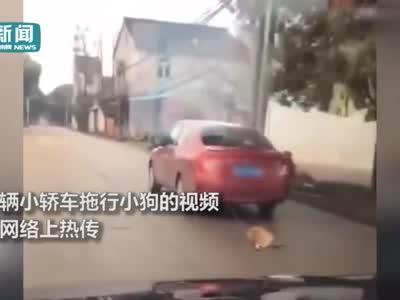小狗遭轿车拖行凄惨嚎叫 当事人:怕它咬人才拴车后