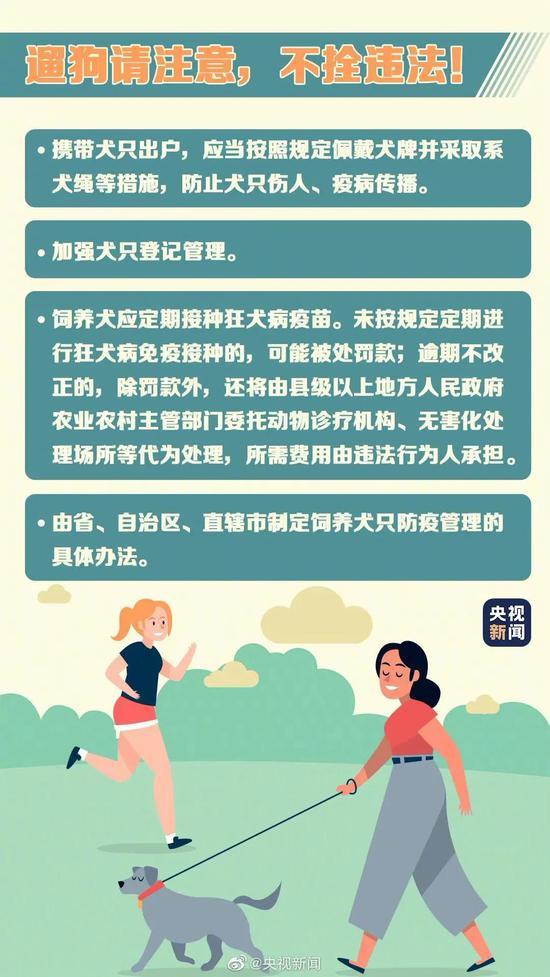 注意!5月1日起遛狗不拴绳违法