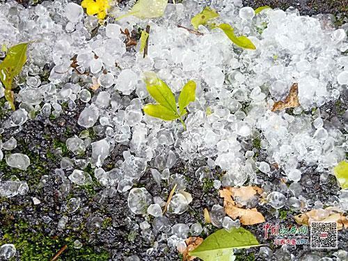江西出现今年首场区域性强对流天气 8.1万人受灾
