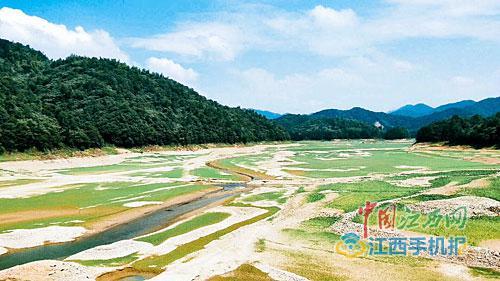 都昌县最大的水库大港水库已见底