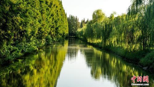 金岛生态园景区