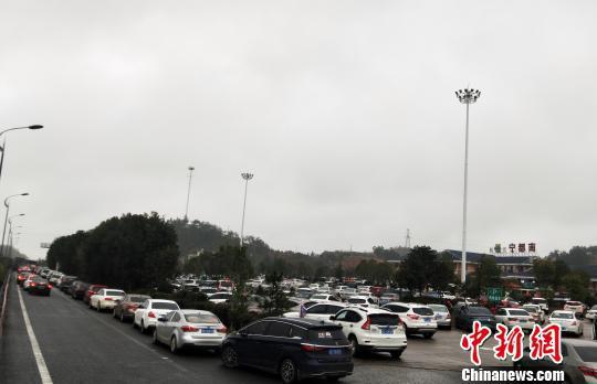图为泉南高速宁都南往福建方向服务区停满了车辆。 江豫摄