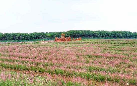 国庆前夕:五福花田景区项目正式开园