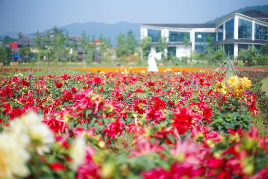 九江龙宫洞:穿着汉服 追逐一场初夏的浪漫花事