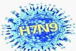 """江西:H7N9禽流感流行季节患者治疗费政府""""兜底"""""""