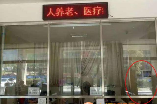 彭泽县社保局大厅:工作人员吹空调 市民等候区热疯