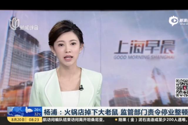 杨浦:火锅店掉下大老鼠 监管部门责令停业整顿