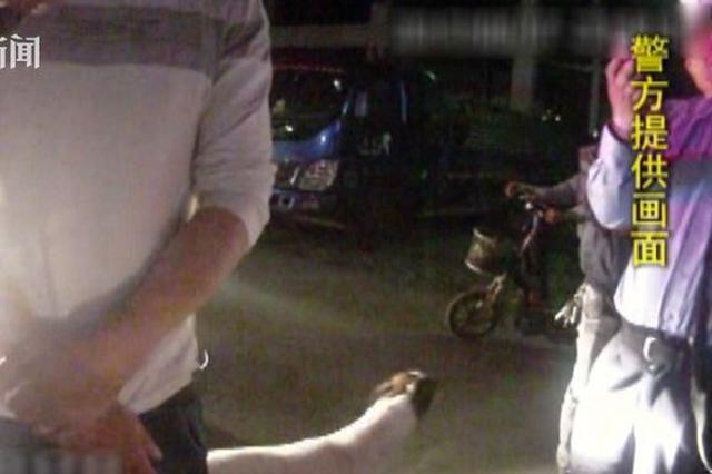 男子酒后花式遛狗 开汽车遛后骑摩托遛致出事故