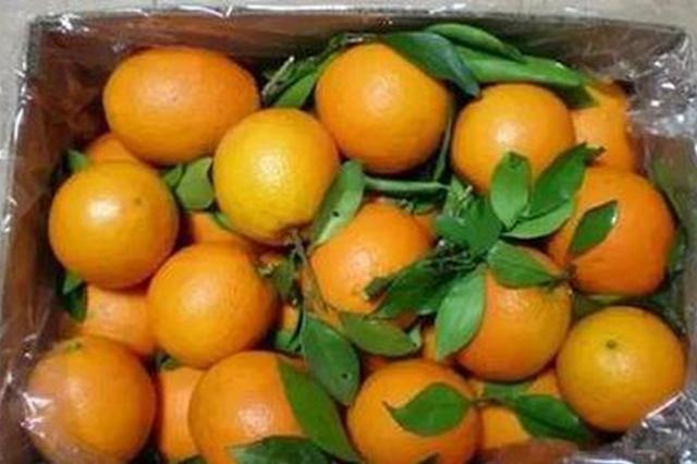 江西建成5个国家级出口食品农产品质量安全示范区