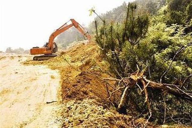 鄱阳县德财置业公司挖山毁林13亩被立案侦查