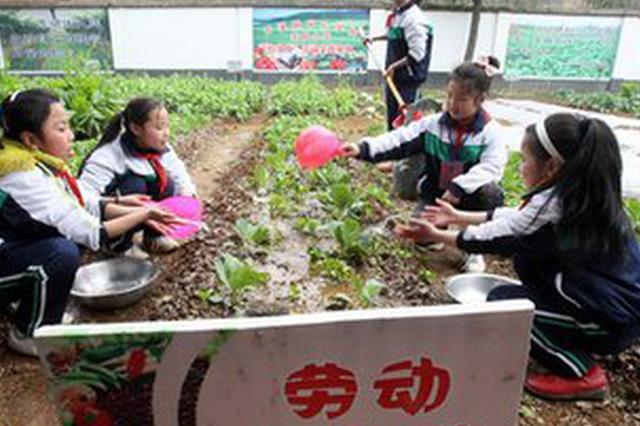 2023年江西每县至少建成1所达标学校劳动实践基地
