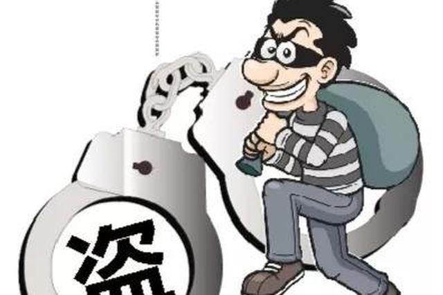 男子手机店行窃 四度下手时被警方当场抓住