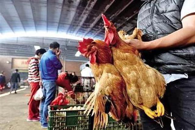 速看!赣州这些地方禁止活禽交易屠宰