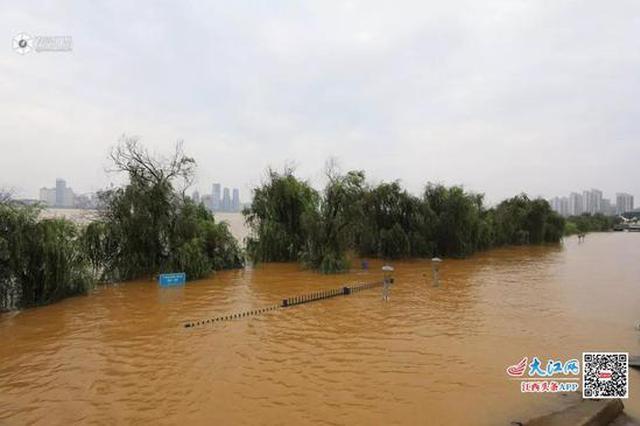 赣江最大流量将超1998年 鄱阳湖将较长时间超警戒
