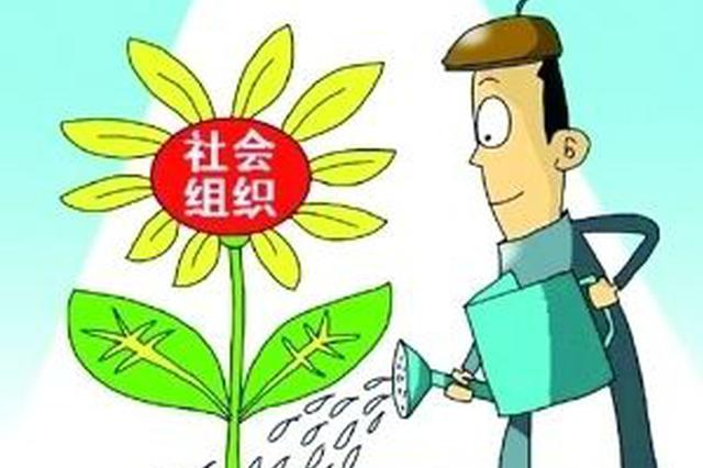 """南昌3000余社会组织有了官方""""协会"""""""