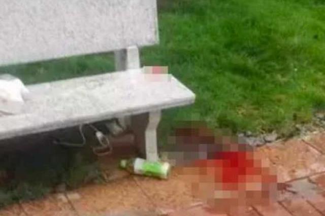玻璃窗从15楼坠落 5岁女童不幸被砸中头部身亡