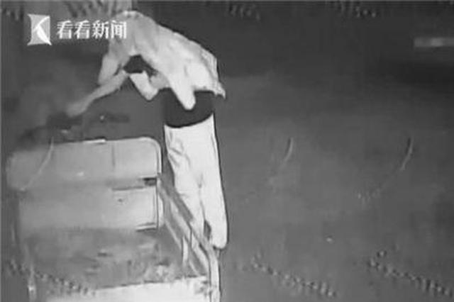"""男子偷车先捅歪摄像头 上演现代版""""掩耳盗铃"""""""